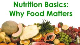 Nutrition Basics: Why Food Matters