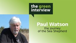 Paul Watson: The Journey of the Sea Shepherd