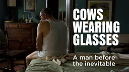Cows Wearing Glasses - Las Vacas Con Gafas
