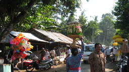 Bali Indonesia - Tourism Impacts Rural Life Water and Rice